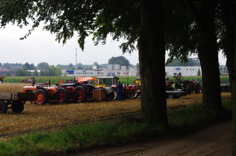 Drukte op het korenveld